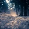 Nieve en los Apalaches
