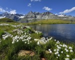 Lago Schwarzsee, Suiza