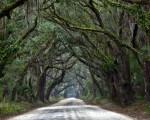 Botany Bay, Carolina del Sur
