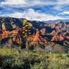 Parque Nacional Coconino, Arizona
